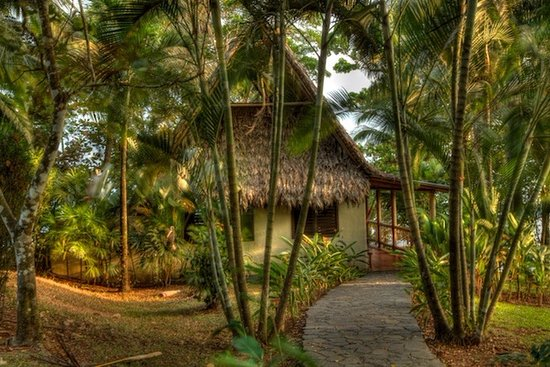 Bosque del Cabo Rainforest Lodge Photo