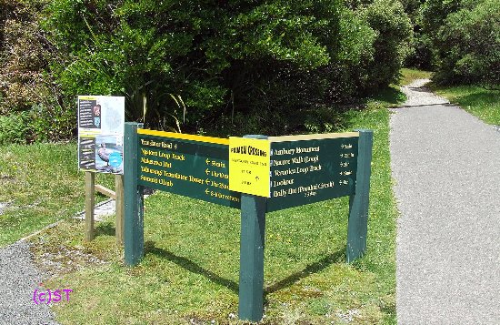 New Plymouth, Yeni Zelanda: walking routes info