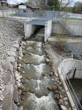 Thornbury, Canada: View of the fishway from the bridge