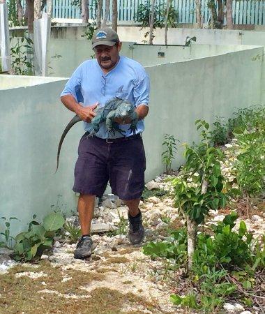 Blue Iguana Recovery Program Safari Tour: photo4.jpg