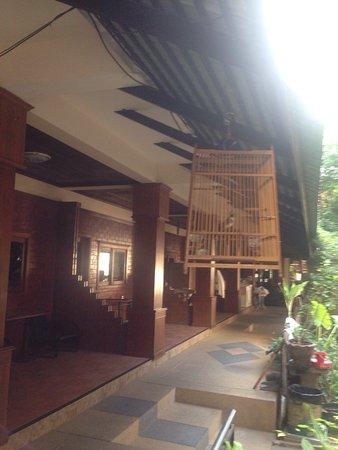 Coconut Grove Samui : photo1.jpg