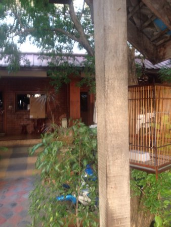 Coconut Grove Samui : photo2.jpg