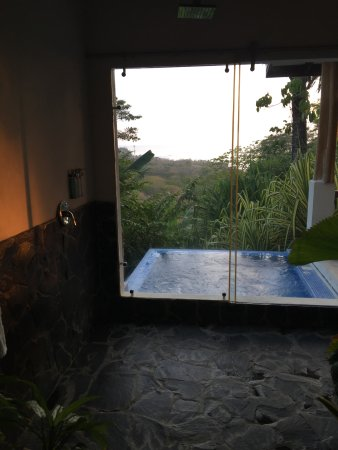 Mal Pais, Costa Rica: View of the shower area, that opens up to the plunge pool of Villa Palma.
