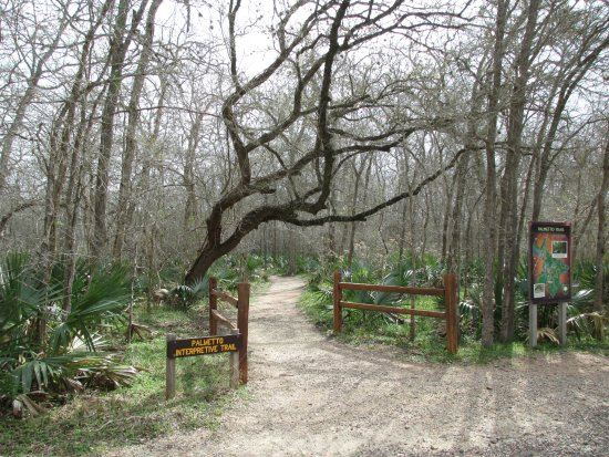 Gonzales, TX: Palmetto Interpretive Trail.