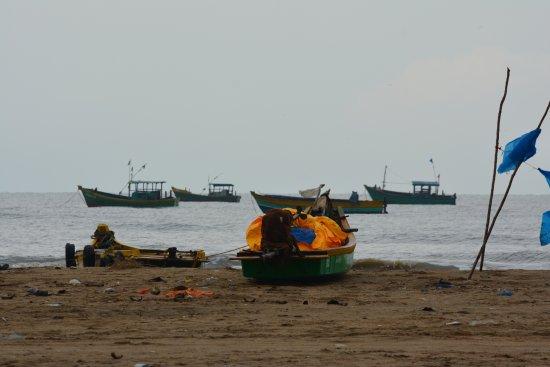 Kodiyakarai, India: Beach View .... beach is 1.0 Km away from the hotel