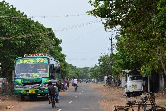 Kodiyakarai, India: The road to VMT Hotel