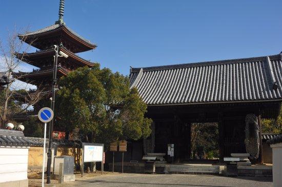 Shidoji Temple : 山門と塔の調和が見事な門前