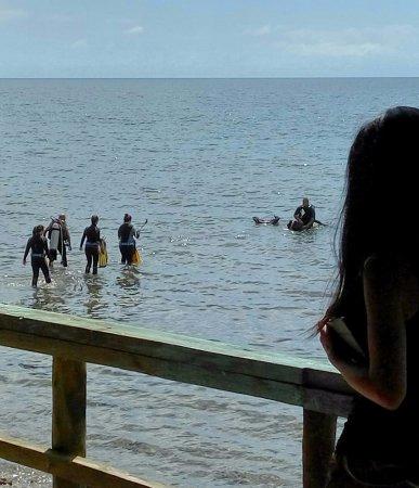 scuba diving in Jagna, Bohol
