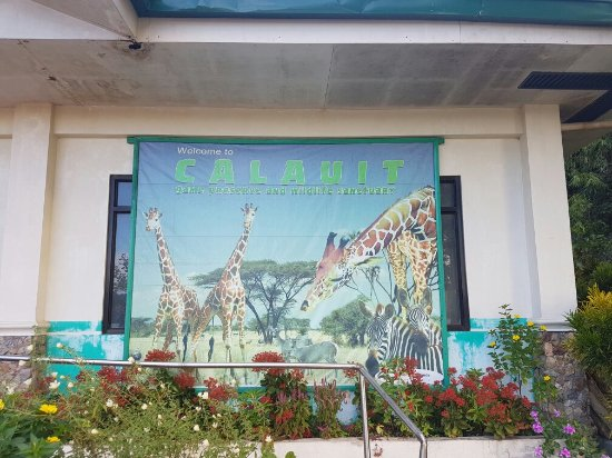 Busuanga Island, Filippinene: Experience safari in the Philippines