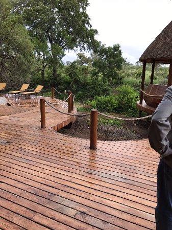 Hoyo-Hoyo Safari Lodge Photo