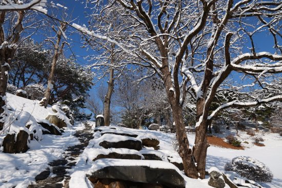 Geumsan-gun, Corea del Sur: The path from the lawn that branches into different hiking trails during winter