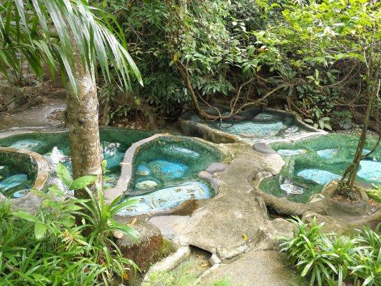 Khlong Thom, Thailand: ธรรมชาติมากๆ