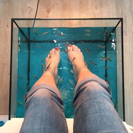 Marina Fish Spa