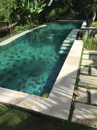 لواك أوبود فيلاز: beautiful pool