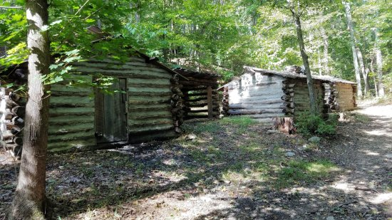Leesburg, VA: The log cabin camp