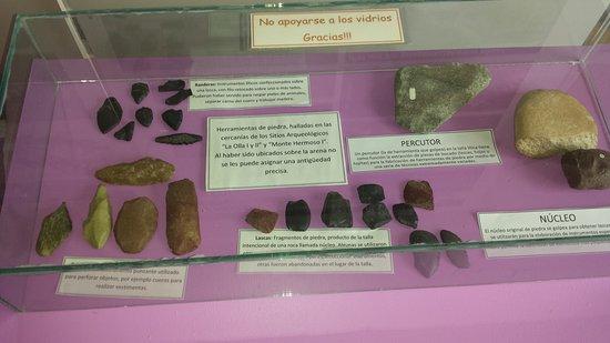 Museo Municipal De Ciencias Naturales Vicente Di Martino