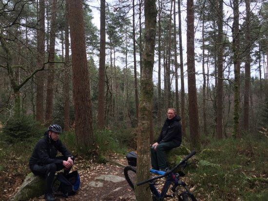 Dalbeattie, UK: Great day out on the bikes the runs are excellent various degrees of difficulty something for ev