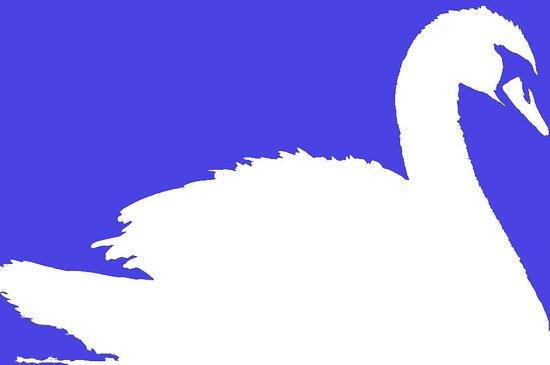 Swan Spa