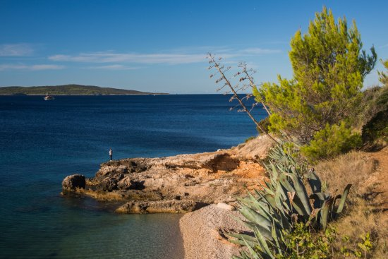Hvar Island لوحة