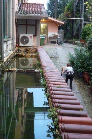 Villa delle Rose Picture