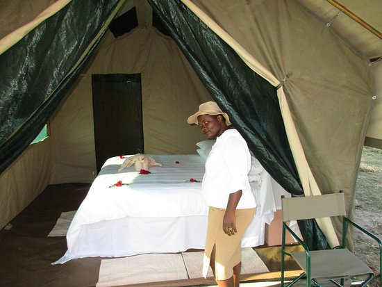 Moremi Wildlife Reserve : This tent was being inspected to make sure that was ready for our guests.