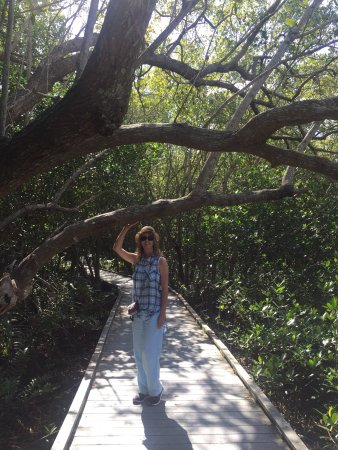 Four Mile Cove Ecological Preserve: Very Shady Mango walk Look for the Crabs. Thank you to all who has  served and are Serving.