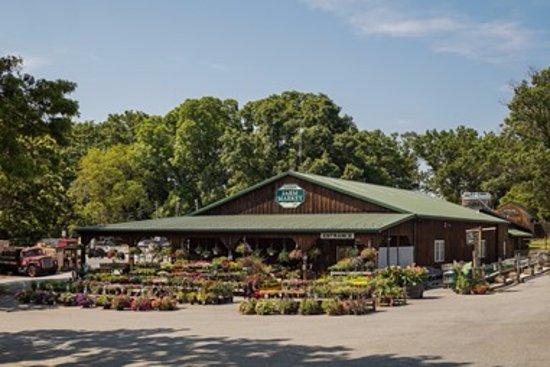 Media, Pensilvania: Linvilla Orchard's Farm Market