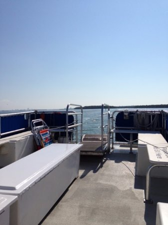 Caladesi Island State Park: Bring chairs etc. on the ferry ride over.