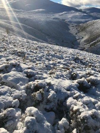 Aviemore, UK: In the snow
