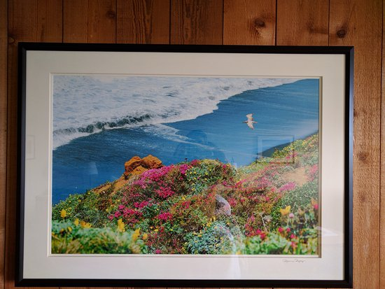 The Sea Ranch, CA: Nice photos of the area decorate the property