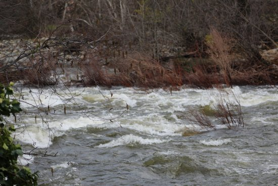 Kaweah River behind Reimers Candies - Three Rivers Ca
