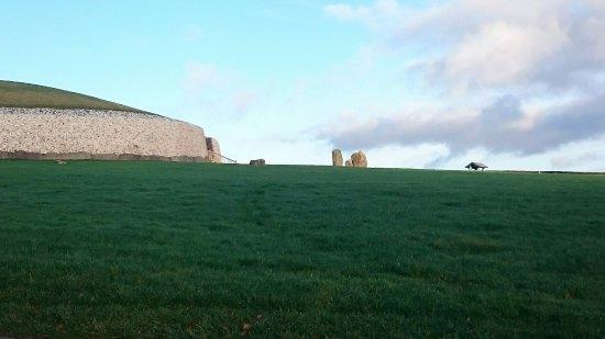 County Dublin, Ireland: Mary Gibbons Tours