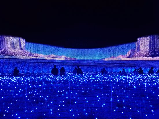Nabana no Sato: theme in blue