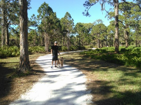 One of the boardwalk areas along the bay - Picture of ...