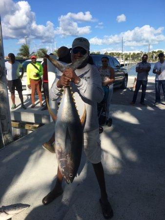 Turtle Cove, Providenciales: nice tuna