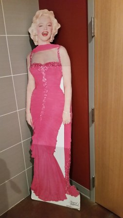 Spring Valley, MN: Marilyn hanging out in women's restroom