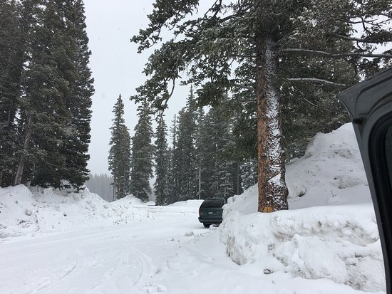 Grand Mesa: Winter on Grand Mess