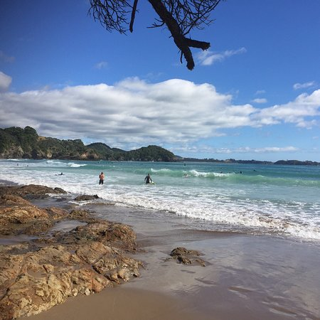 Tutukaka, Nouvelle-Zélande : Sandy bay for surf and sand