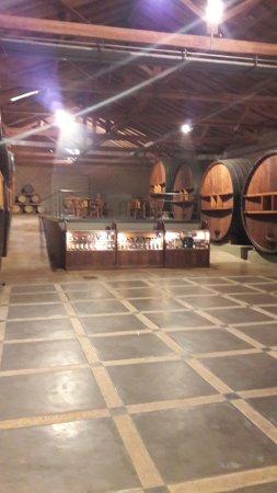 Province of Mendoza, อาร์เจนตินา: Toneles en la entrada del salón de ventas