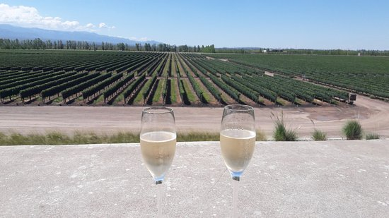 Lujan de Cuyo, Argentina: Luego del postra terminamos la copa en la terraza