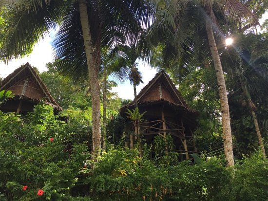Oceania Hotel Updated 2018 Reviews Price Comparison Colonia Federated States Of Micronesia Tripadvisor