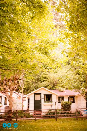 Guerneville, CA: Outside view of the Poolside Cabins