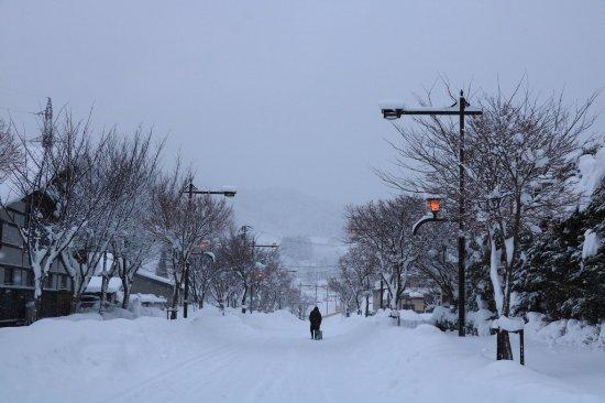 Kuroishi, Japan: 花禪之庄外面冬景