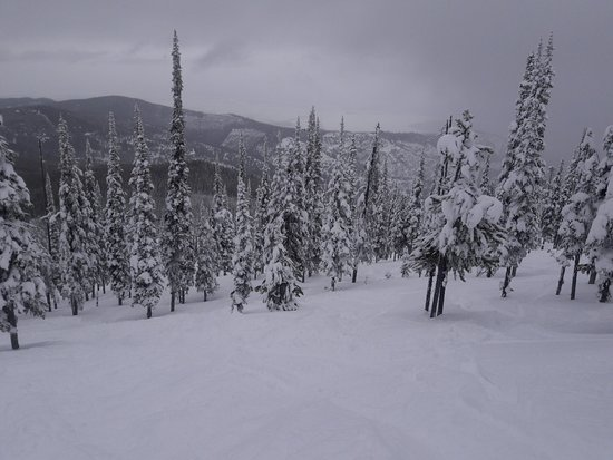 Lakeside, MT: The Glades run looked like this when I was there.