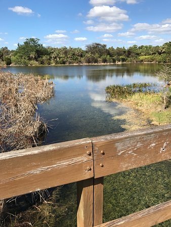 Daggerwing Nature Center: Walking Trail, View of Lake