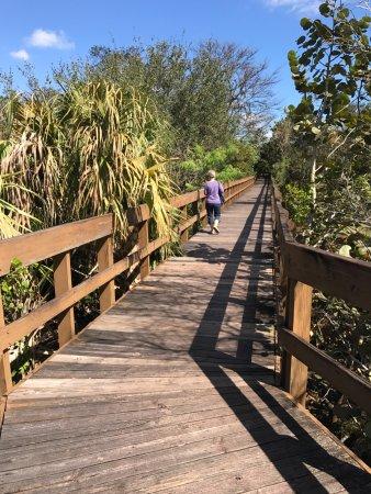 Daggerwing Nature Center: Bridge walkway