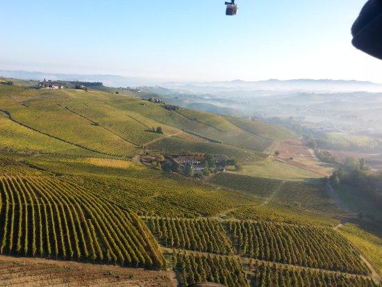 Barolo, Italia: Wineyards