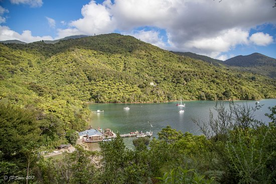 Endeavour Inlet, Nueva Zelanda: Looking down at the Boatshed Bar at Punga Cove