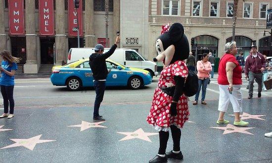 Hollywood: 이렇게 인형탈을 쓴 사람들도 있어요. 찍으면 돈 내라고 하니까 몰래 찍으세요.