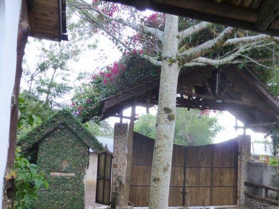Marangu, Tanzanie : Yard and entry door